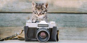 Jak jsem se stal fotografem