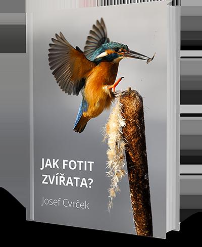 e-book jak fotit zvířata