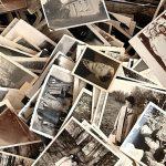 Jak archivuji aupravuji fotografie?