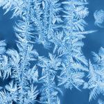 Co fotit, když je nudná zima? Ak tomu bez sněhu.