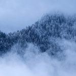 Co fotit, když je nudná zima? Další dávka inspirace :)