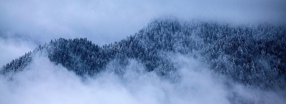zima 09 článek